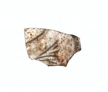 Fragment with Half-Palmette