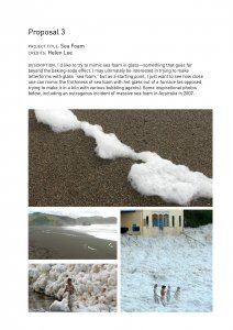 Proposal 3 [electronic resource]: sea foam.