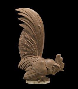 Coq nain (Bantam rooster)