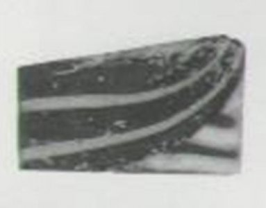 Wing Inlay Fragment