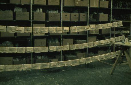 [Pages on support sheets drying on nylon fishline racks, Acme building] [slide].