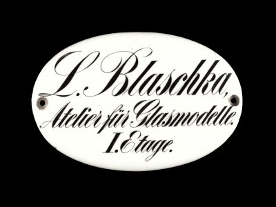 """Business Plaque: """"L. Blaschka, Atelier für Glasmodelle. I. Etage"""""""