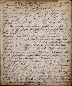 [Blaschka notebook beginning with] Gattung Calliactis, Verrill.