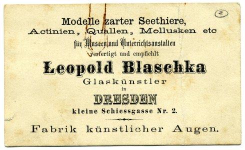 [Leopold Blaschka, Glaskünstler in Dresden]