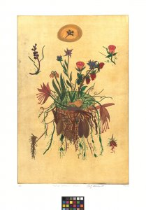 Walt Whitman's garden [art original].