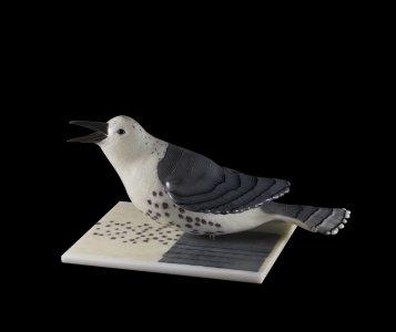 Avian Pair