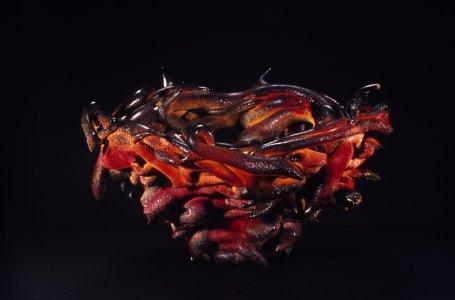 Pot d'épine rouge et noir [slide].