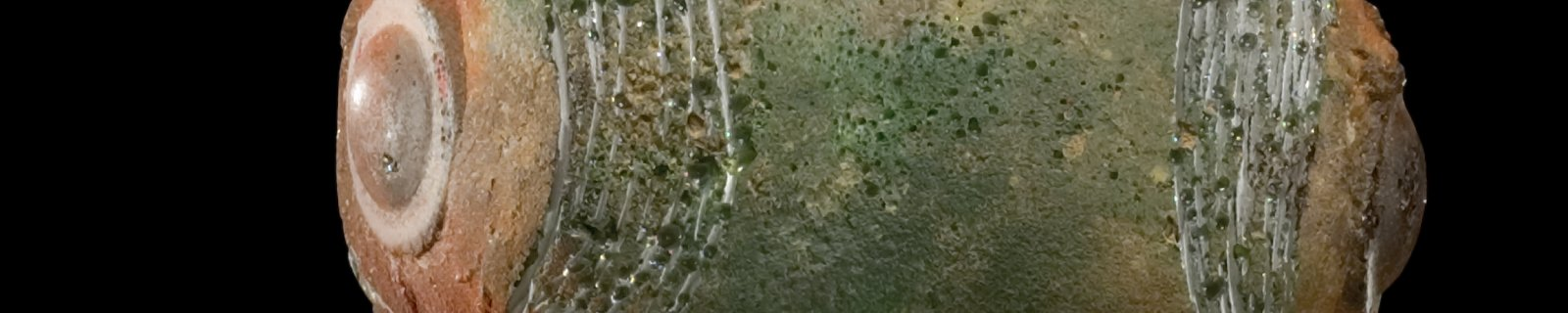 Rey del Cenote - Isabel De Obaldía