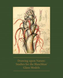 Drawing upon Nature: Studies for the Blaschkas' Glass Models
