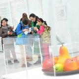 Group Tours at The Corning Museum of Glass (Mandarin Chinese)
