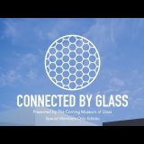 Connected by Glass: Catch Up with the Curators