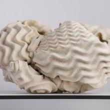 Problematica (Foam Rock), Sarah Briland